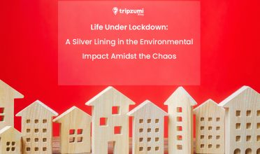 Effects of Lockdown: A Silver Lining in the Environmental Impact Amidst the Chaos