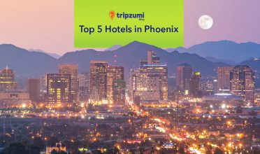 Top 5 Hotels in Phoenix