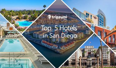 Top 5 Hotels in San Diego